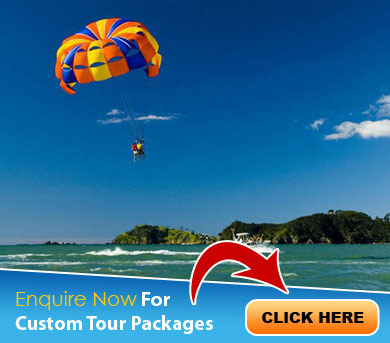 Saputara Tour Packages